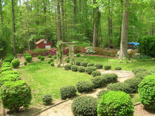 final-backyard-before Ideas For Wooded Backyard Landscape on ideas for muddy backyards, ideas for sloped backyards, ideas for sloping backyards,