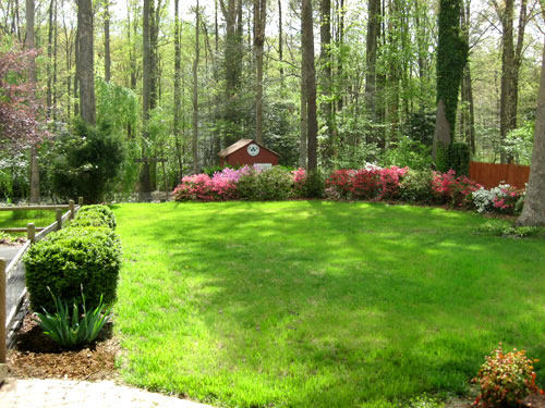 What we look for look past while house hunting young for Large lot landscaping ideas